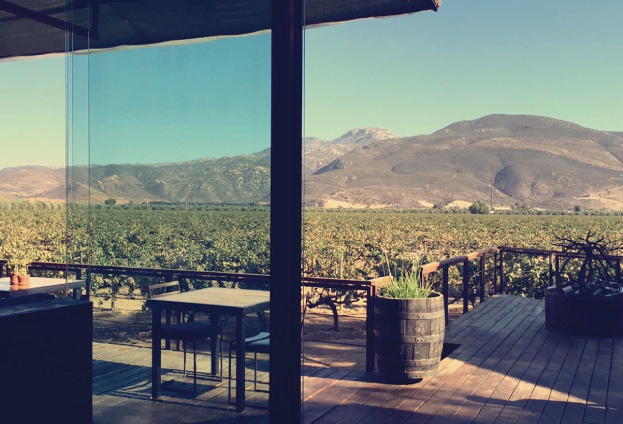5 vinícolas que no puedes dejar de visitar en el valle de Guadalupe - portada