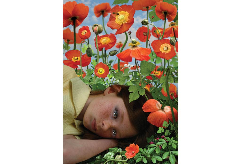 Ruud van Empel, Dawn #3, 2008, Cibachrome, dibond, plexiglas 33 x 24 inches (84 x 60 cm) 33 x 23 inches (84 x 60 cm)