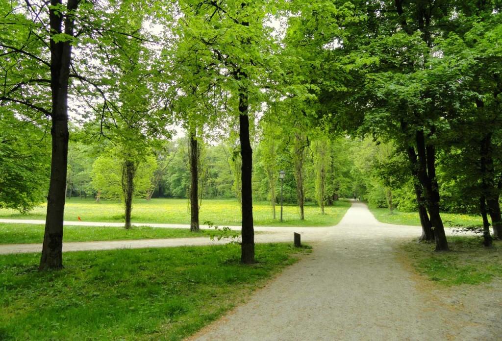 https://upload.wikimedia.org/wikipedia/commons/f/f9/Landscape,_Englischer_Garten,_Munich_-_DSC07133.JPG