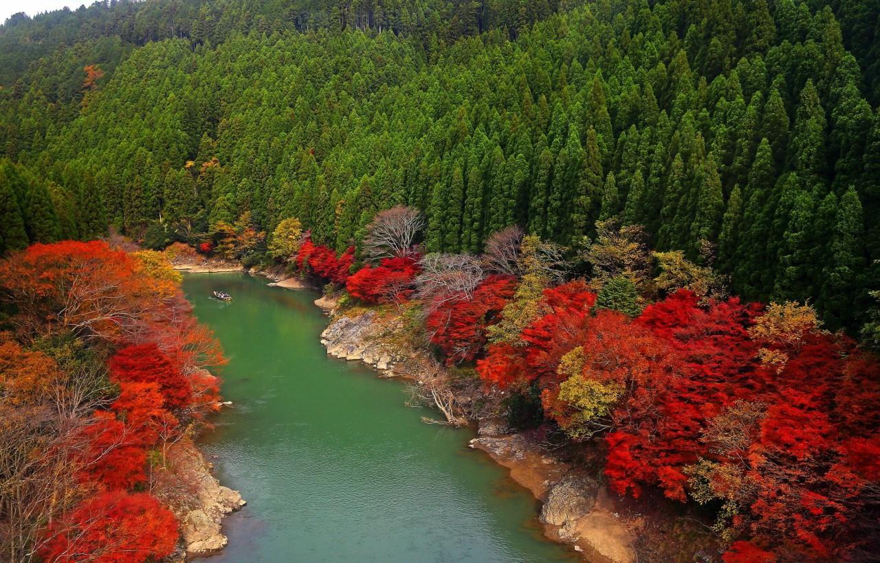 Arashiyama-min