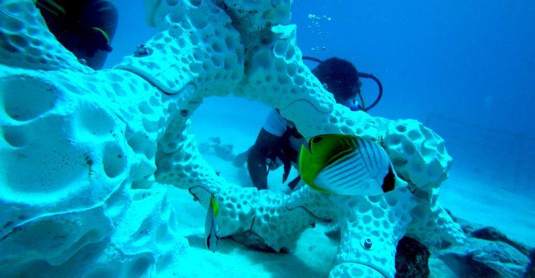 La nueva propuesta en 3D para salvar los arrecifes de coral - 3DReef_PORTADA
