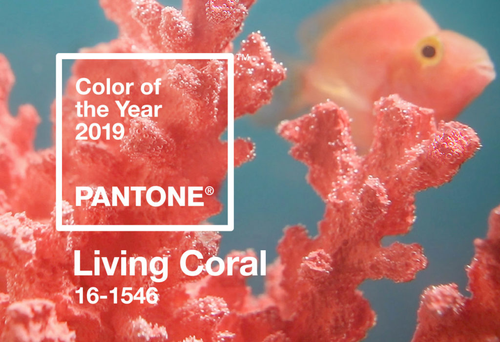 Living Coral: Pantone Color of the Year - Pantone color of the year  portada