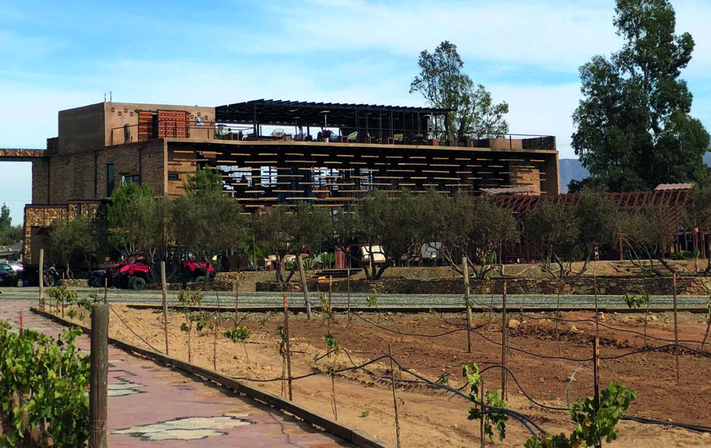 Agua de Vid. Hotel boutique en el Valle de Guadalupe - AGUA DE VID-9
