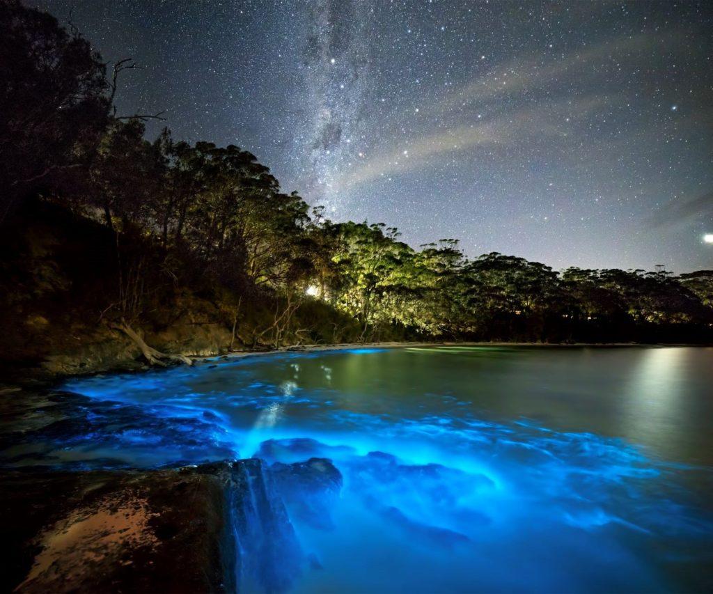 Los lugares más impresionantes del mundo con bioluminiscencia - Lugares bioluminiscencia en el mundo portada